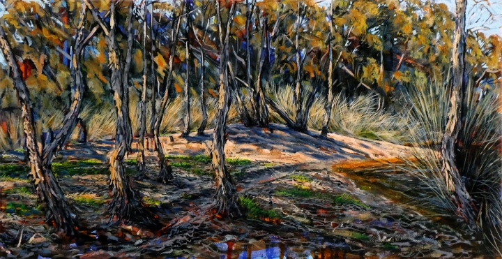 Through the Paperbarks, 70cm x 36cm, oil on canvas. 2018