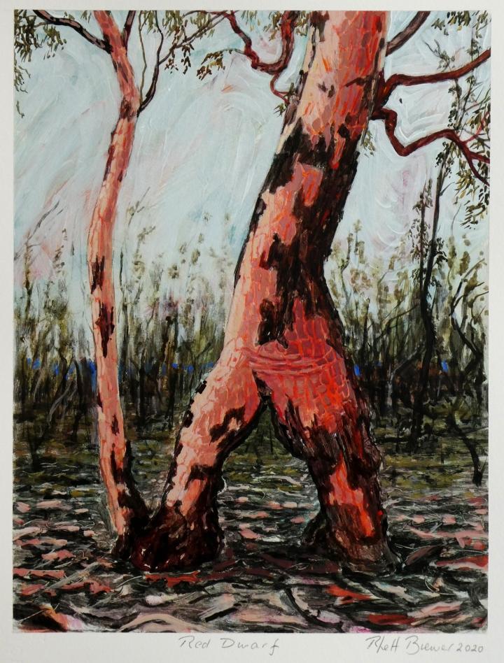 Red Dwarf , 39cm x 28cm, acrylic on 649 g.s.m. watercolour paper, 2020